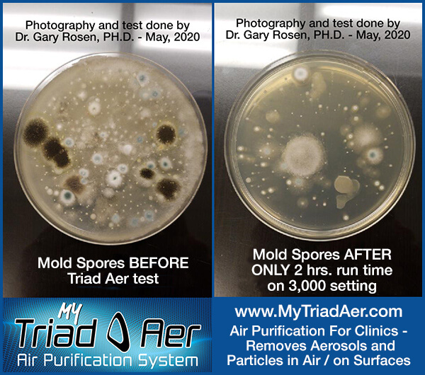 Mold-Spore-Test-Dr-Rosen-May-2020-revised