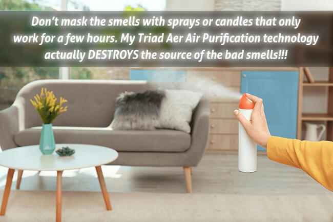 sprays-only-mask-the-smells-my-triad-aer-destroys-them-600pix